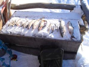 kalastus4